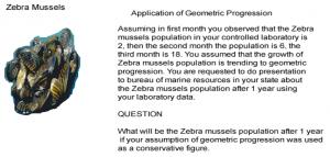 Geometric1